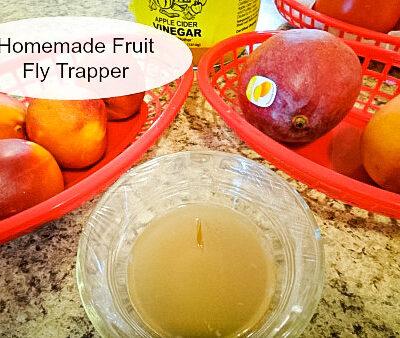Two bowls of fruit & a bowl of vinegar #fruitflytrap