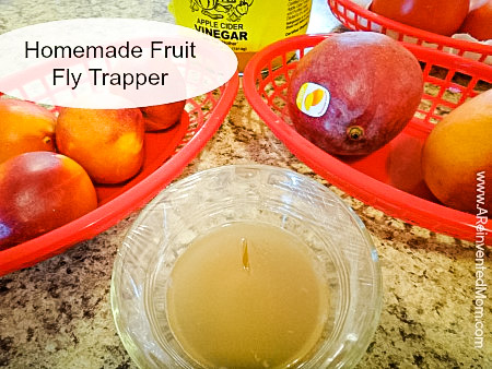 Easy Homemade Fruit Fly Trap ~ A Reinvented Mom