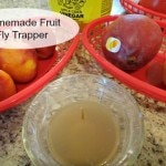 Homemade Fruit Fly Trapper A Reinvented Mom