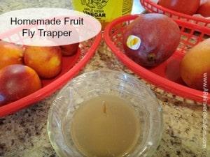 Homemade Fruit Fly Trapper