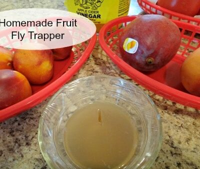 Homemade Fruit Fly Trapper
