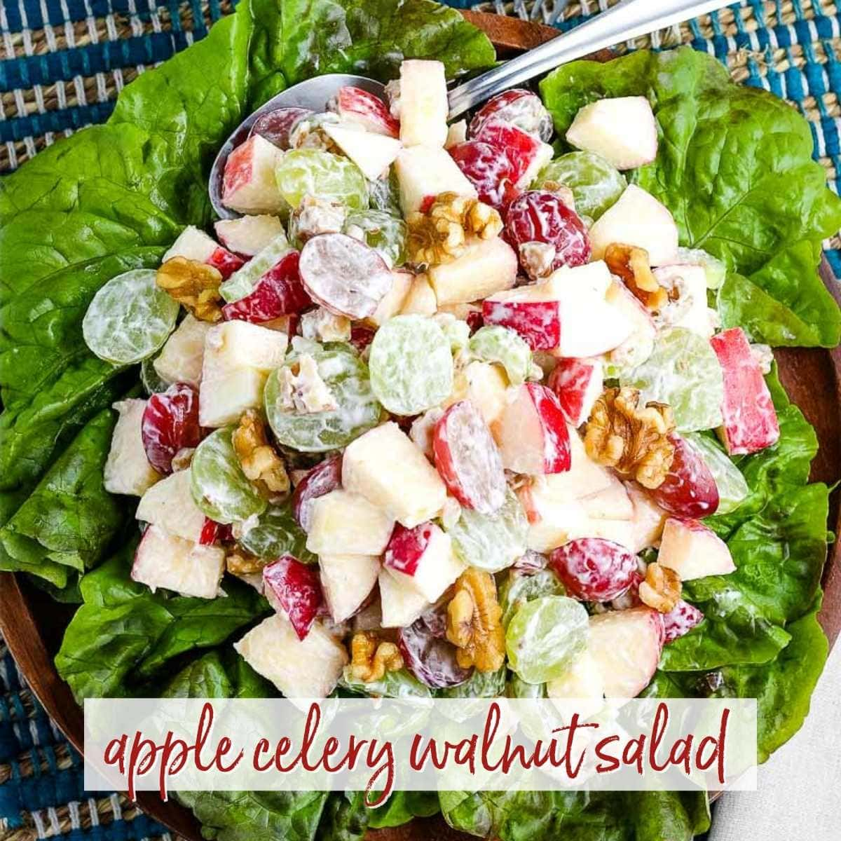 top shot of apple celery walnut salad on lettuce with text overlay