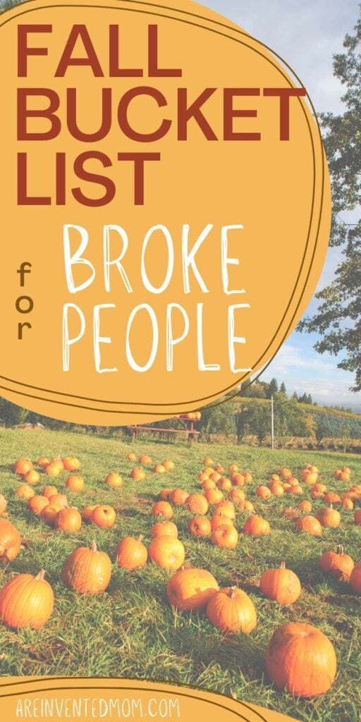 field of pumpkins with Fall Bucket List for Broke People graphic overlay