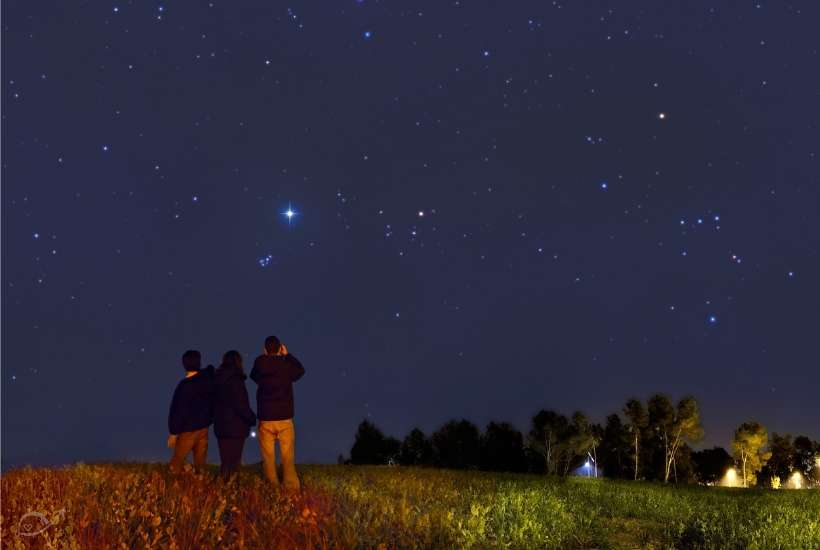 three people in a field looking at the stars and night sky
